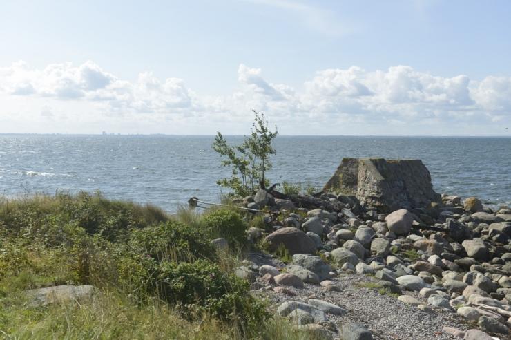 Merepäevad viivad õppereisiga Aegna saarele
