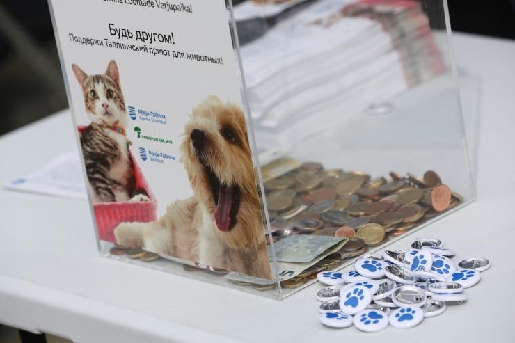 Merepäevade külastajad annetasid loomade varjupaigale üle 1800 euro