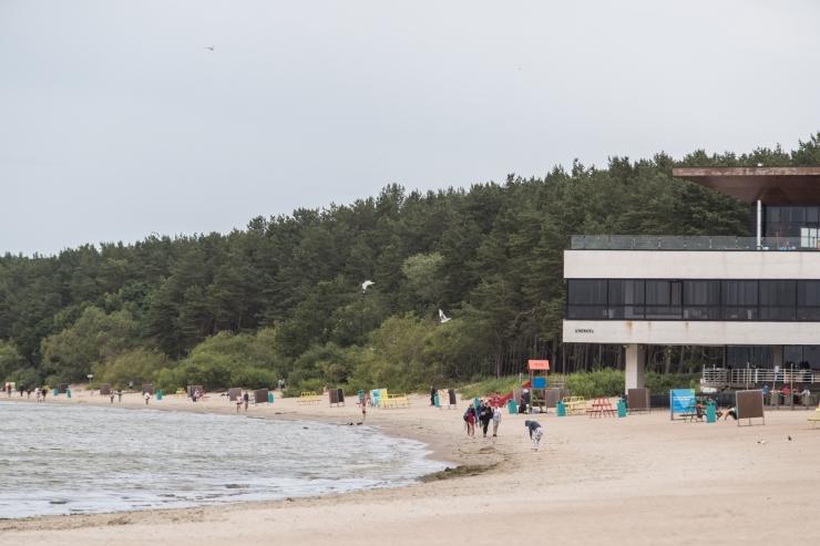 Terviseamet hoiatab Stroomi ja Pikakari rannas vohava sinivetika eest