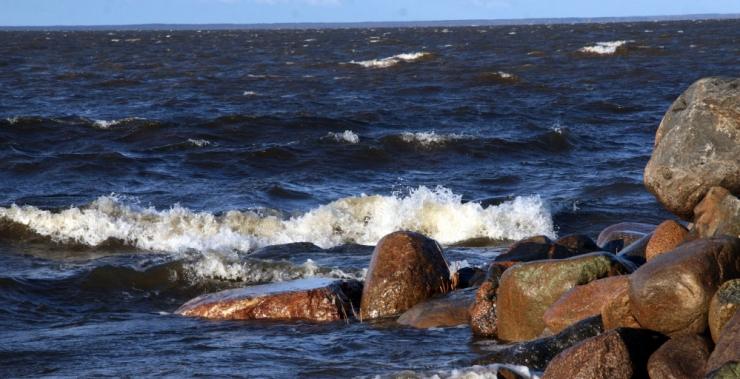 Eesti tähistab augusti keskel looduse päeva