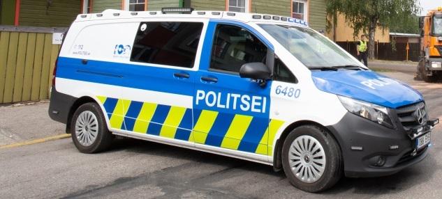 Politsei: Raplamaal hukkunud juht võis tegeleda roolis muude asjadega