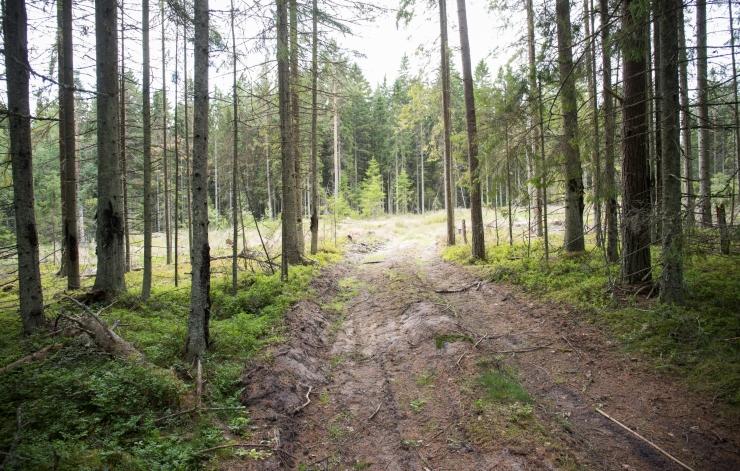 Eesti Looduskaitse Seltsi kokkutulekul valiti seltsi auliikmed ja tunnustati maaomanikke