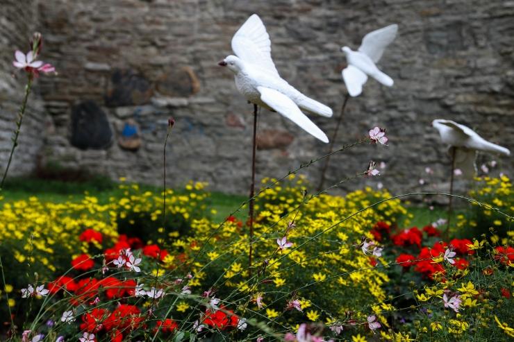 FOTOD JA VIDEO! Imekauni lillefestivali lõputseremoonial autasustati aednikke ja kunstnikke