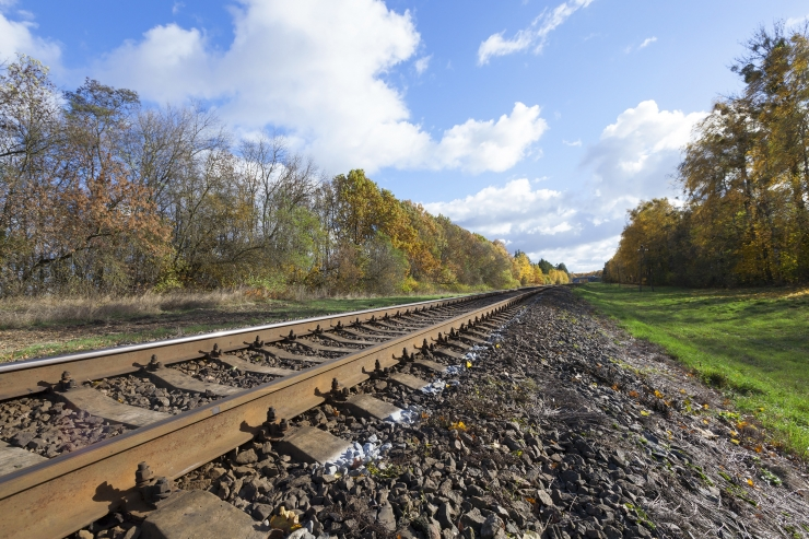 Rail Balticu Eesti trass kallineb eelprojekti kohaselt 18 protsenti