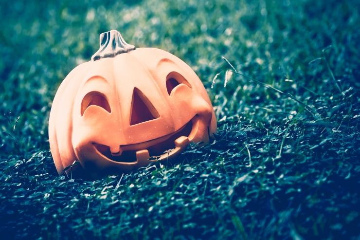 Halloweeni õhtul toimub müstiline matk Pirita ürgorus