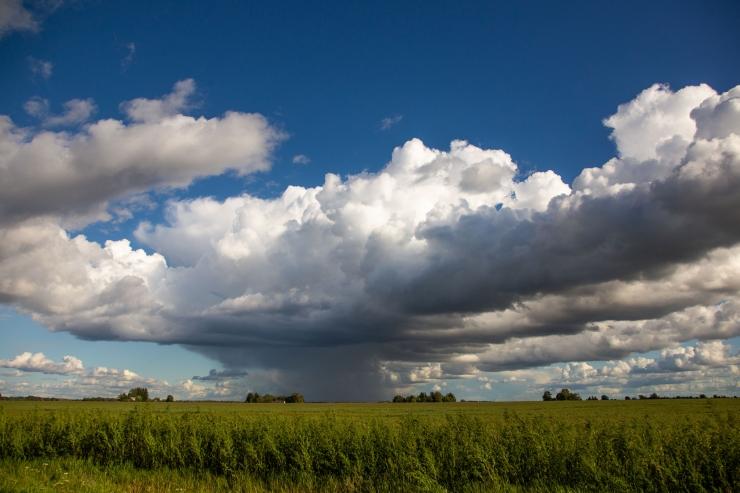 Lähipäevadel on ees ootamas vilu ja vihmahoogudega ilm