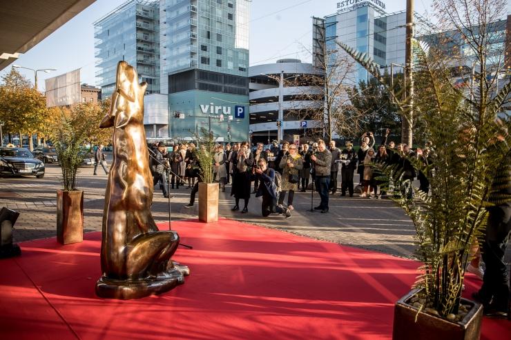 Pimedate Ööde filmifestival tänab oma 196 koostööpartnerit ja organisatsiooni