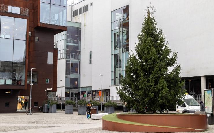 VIDEO! Rotermanni kvartalis pandi püsti jõulukuusk