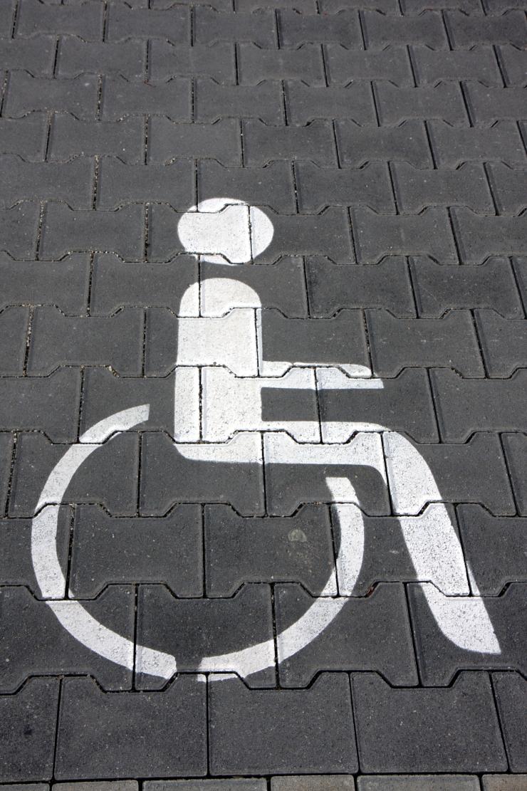 Töö puudega inimeste poliitika korrastamisega jätkub