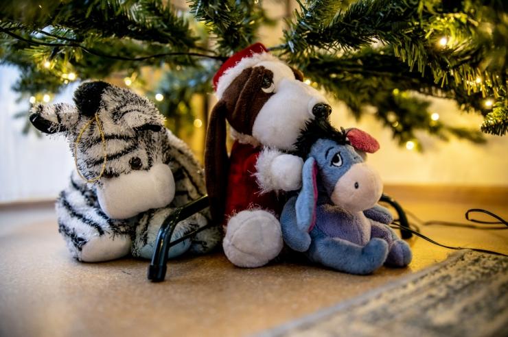 Tuhanded Eesti lapsed veedavad jõulud lastekodus