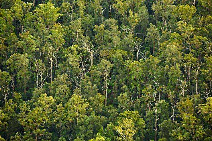 EMA looduskaitsjad ja keskkonnainspektsioon sõlmisid koostöölepingu