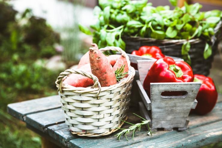 Eesti Vegan Selts kutsub uuel aastal vastu võtma Vegan väljakutset