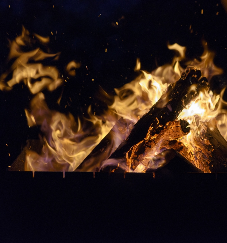 Lasnamäel kogutakse kuuski tuleskulptuuride tarbeks