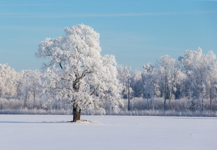 Pühapäev toob kuni 25 külmakraadi