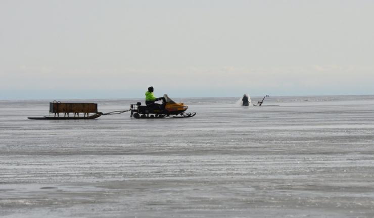 Uuring: Peipsis ja sinna suubuvates jõgedes on palju ohtlikke aineid