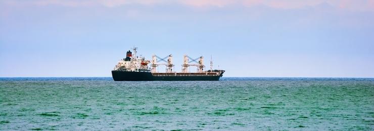 Simson: astume esimese sammu, et taastada Eesti kaubalaevastik