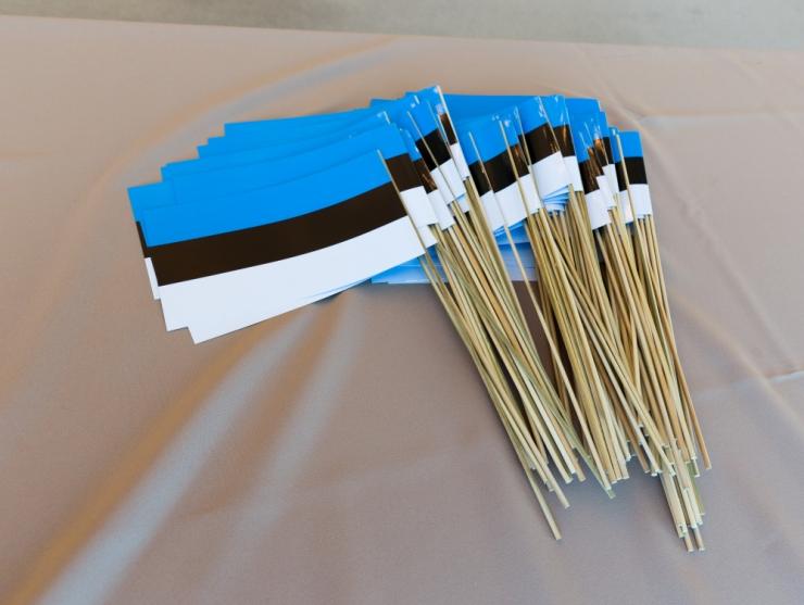 Kristiine kutsub tähistama Eesti Vabariigi 101. sünnipäeva
