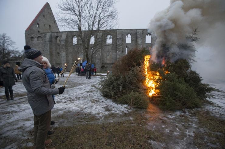 FOTOD: Pirita talvetulel põlenud jõulukuused soojendasid südameid