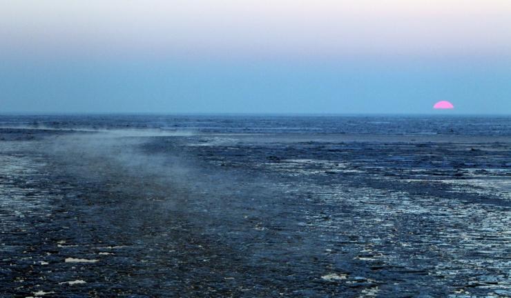 Teadlased: Liivi lahte jõudva lämmastiku kogust tuleb vähendada