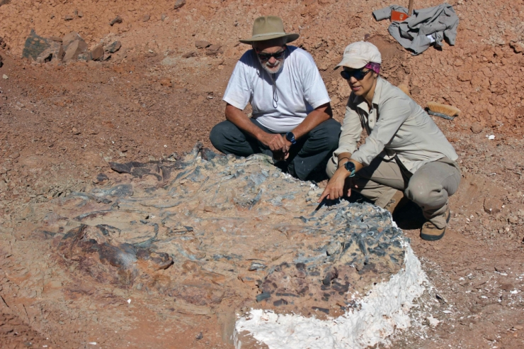 Argentinas leiti 220 miljoni aasta vanused saurusefossiilid