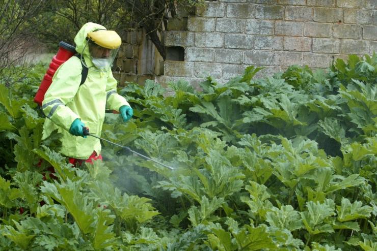 Tähelepanu: taimekaitsetöödel tuleb järgida ohutusnõudeid
