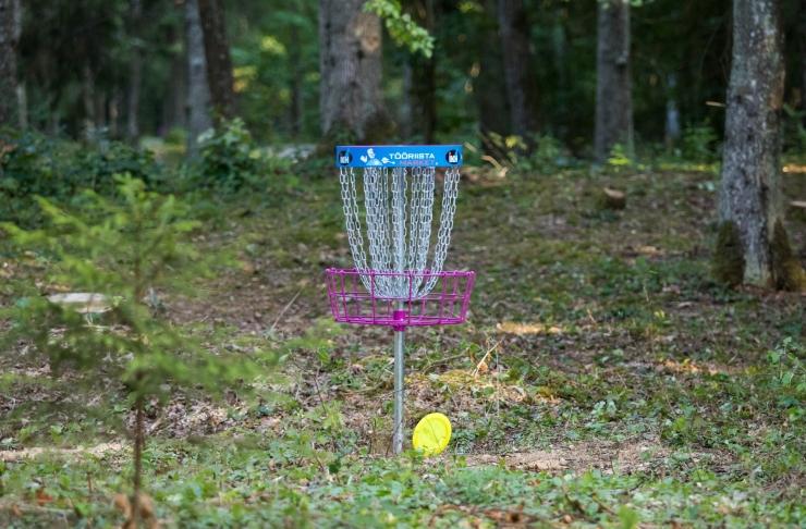 Järve metsas saab nüüd mängida kettagolfi