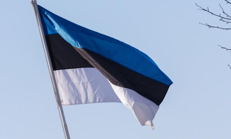 Täna heisatakse emadepäeva puhul Eesti lipud