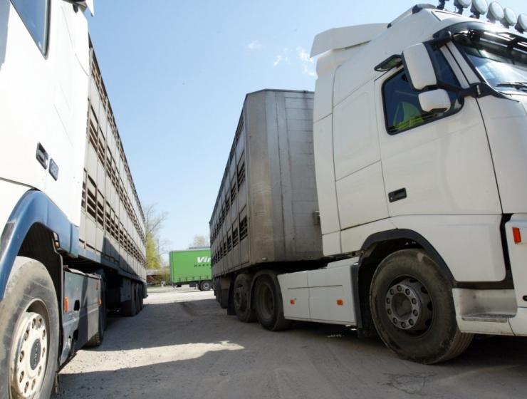 Kaupade eksport kasvas mais 8 protsenti