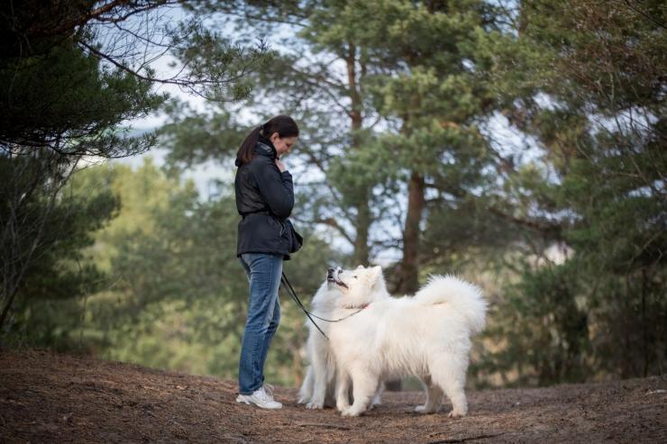 Koeratreener karusloomafarmidest: koer puuris täispikka elu ei ela