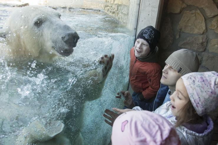 Tallinlane pärandas kogu oma vara Tallinna Loomaaiale