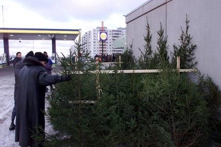 Kristiine otsib konkursiga linnaosa kahte asukohta jõulukuuskede müüjaid