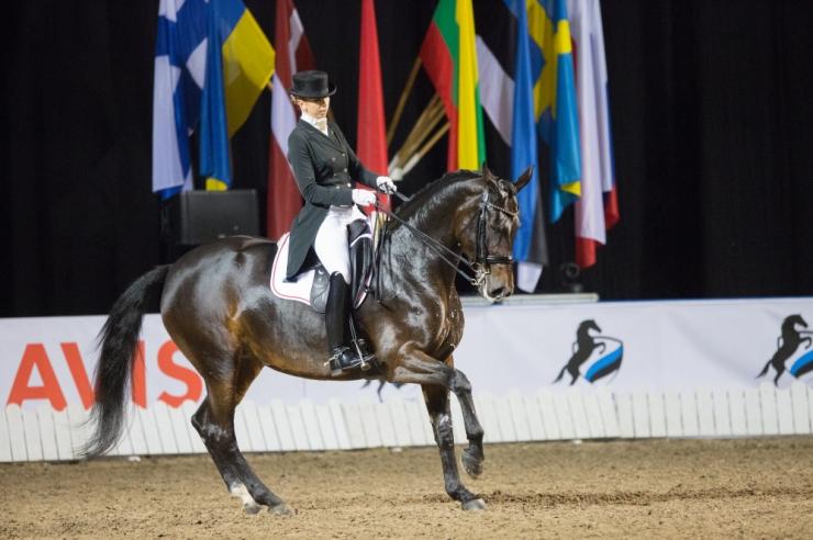 VIDEO! Tallinnas peetaval ratsavõistlusel paneb end proovile 116 ratsanikku 172 hobusel