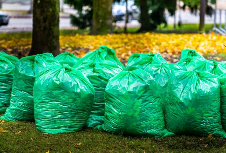 VIDEO: Haabersti linnaosavalitsus tuleb esmakordselt leheveol appi