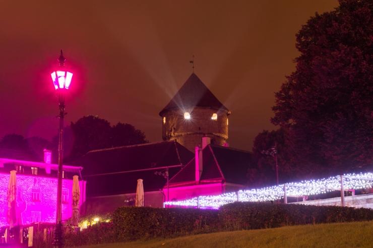 VIDEO: Loeng-linnaretk Tallinna mustpeade jälgedes