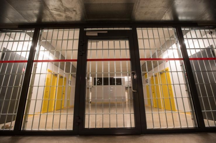 Kohus võttis Tallinnas Nõmme kandis tegutsenud sarivarga vahi alla
