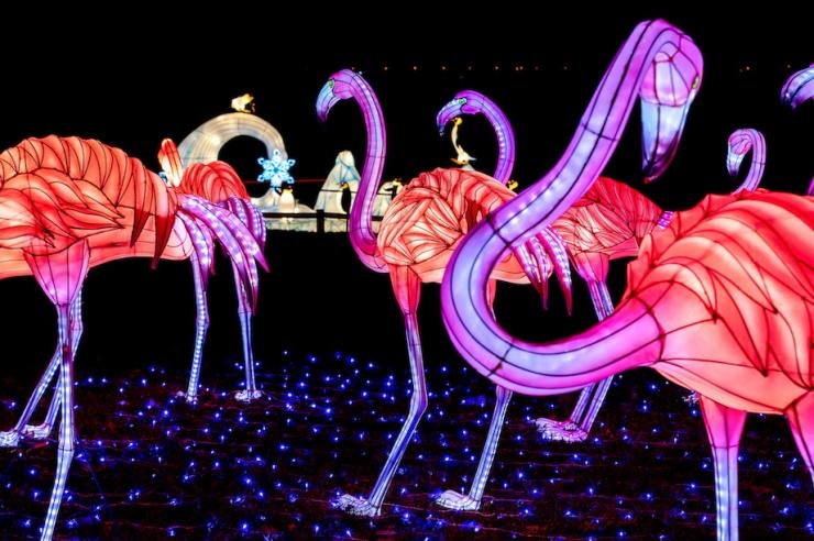 Suurim Aasia laternafestival jõuab esmakordselt Eestisse