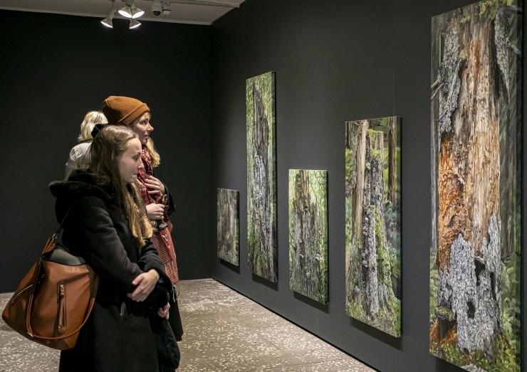 GALERII! Jane Remm näitab maastikke