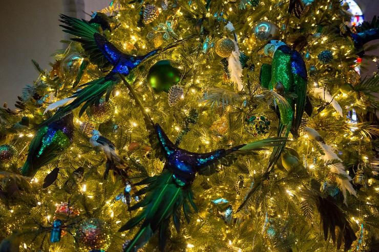 GALERII: Niguliste muuseum sai imelise jõulupuu