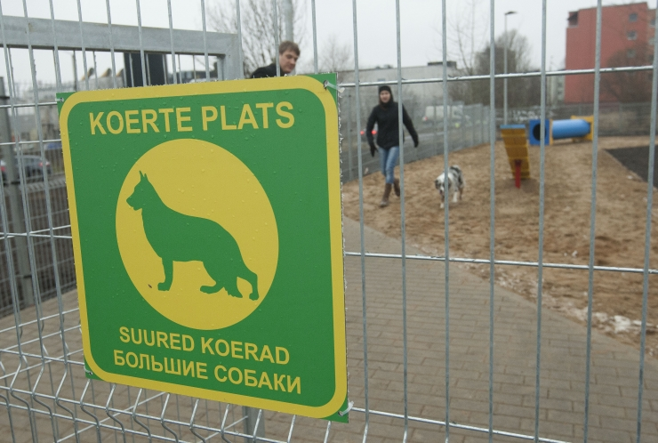 Tallinn remondib koerte jalutusväljakuid