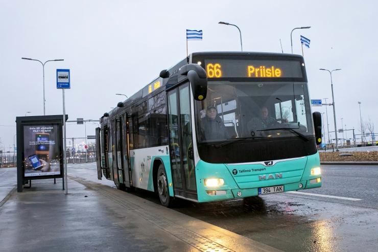 VIDEO JA GALERII! Uus bussiliin number 66 ühendab Lasnamäe ja Põhja-Tallinna