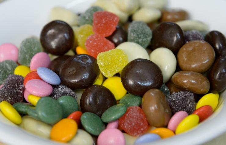 Veterinaar: sagenenud on lemmikloomade šokolaadimürgistused