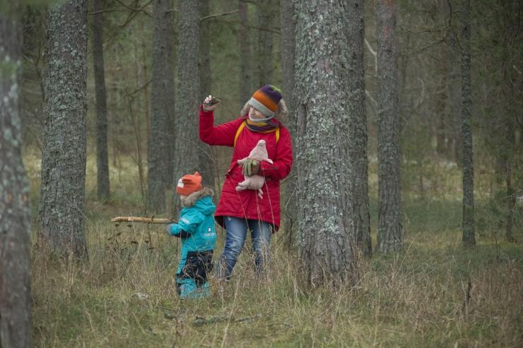 Eesti akadeemilise metsaharidus saab saja aastaseks