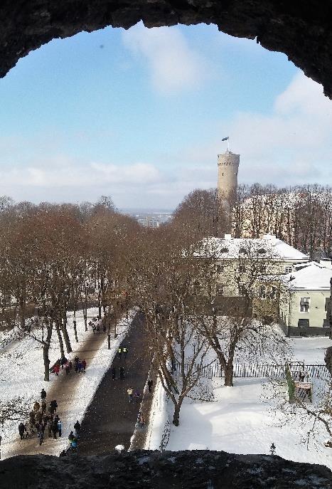 Linnamuuseum kutsub Vabariigi aastapäeval tutvuma riigi sümboolikaga ja relvastusega
