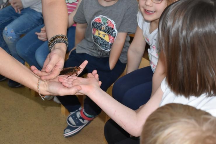 Õpetajad ja lapsevanemad, toetage Rohelise Kooli programmi: see õpetab teie lapsi loodust hoidma ja säästma