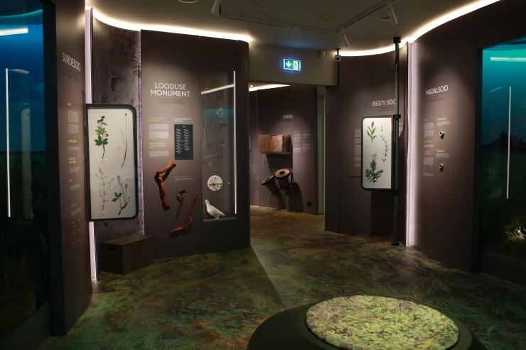 Eesti Loodusmuuseum avab tänasest taas oma uksed