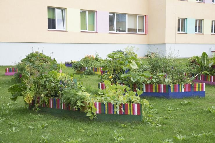 Keskkonnaprofessor Sooväli-Sepping: kogukonna aiandus õitseb, kuid vajame linna metsikumat loodust ja piknikukultuuri tekkimist