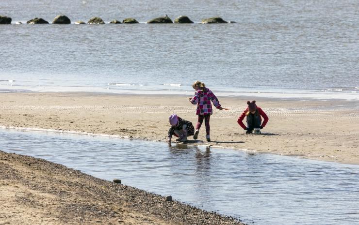 Kakumäe rannas alustatakse liiva sõelumist