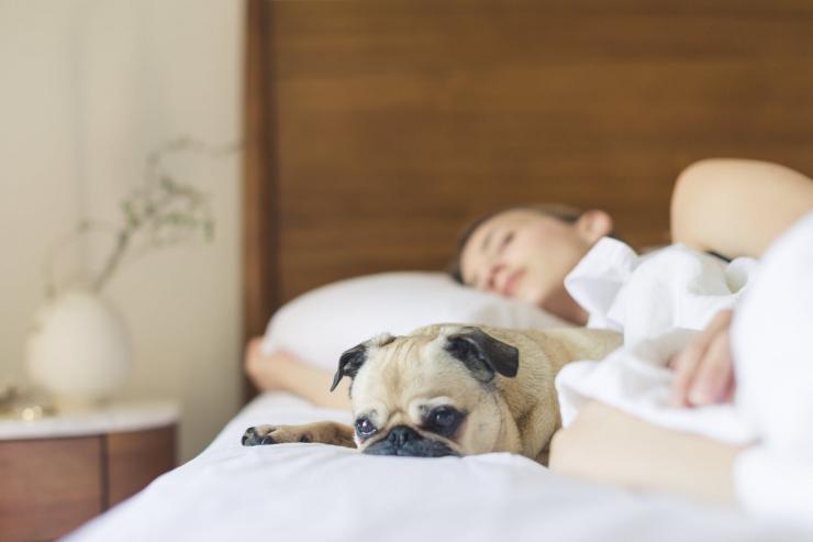 Uuring: korralikult magavad lapsed on eluga rohkem rahul