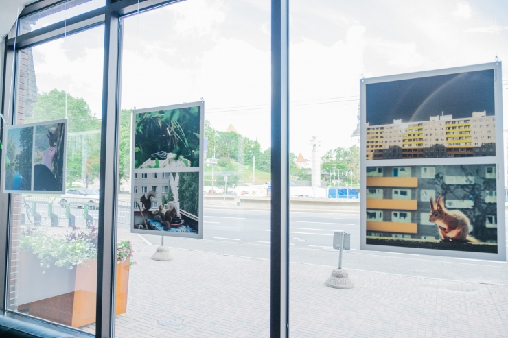FOTOD JA VIDEO! Linnavalitsuses avati Mustamäe suvine fotokonkursi näitus