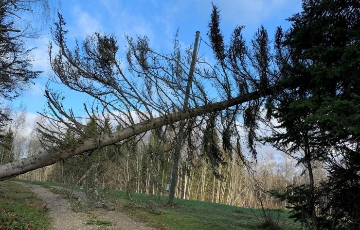 HOIATUS! Ilmateenistus andis kogu Eestile teise taseme tormihoiatuse